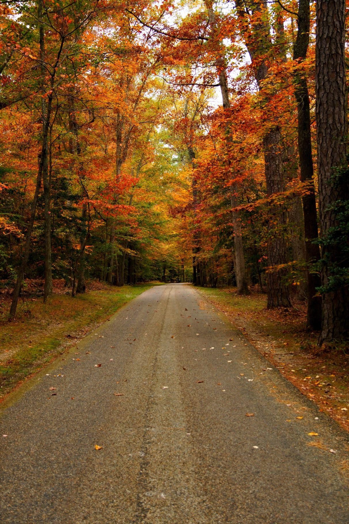 Yorktown Virginia Places To Visit In Virginia Pinterest