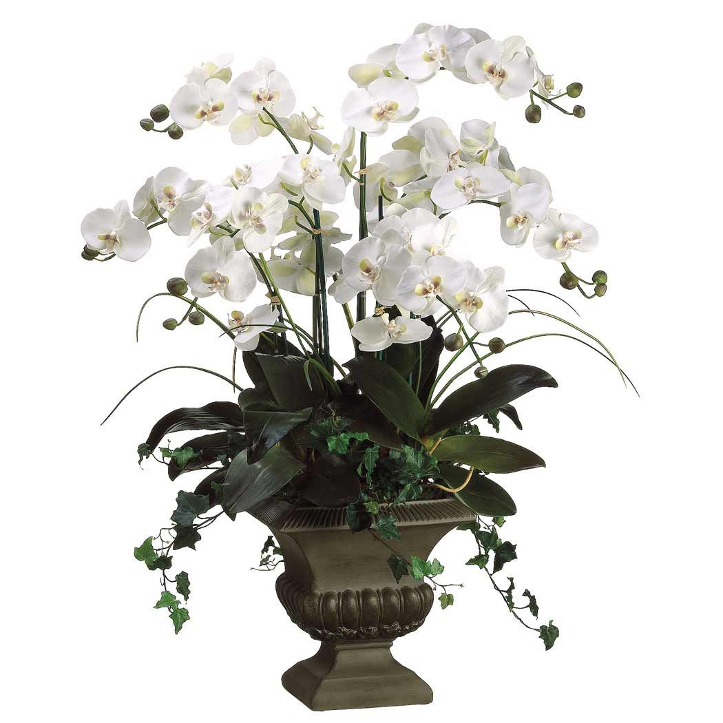 Designer Silk Floral Arrangements  Silk Phalaenopsis Orchids Flower Arrangement  Everyday