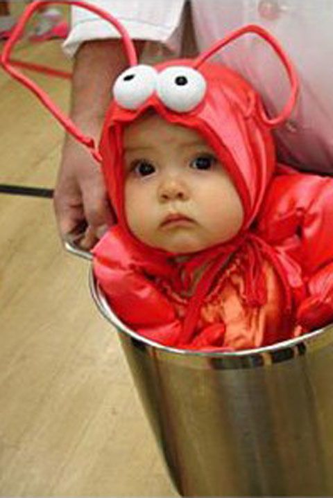 Totally adorable diy infant halloween costumes infant halloween totally adorable diy infant halloween costumes solutioingenieria Images