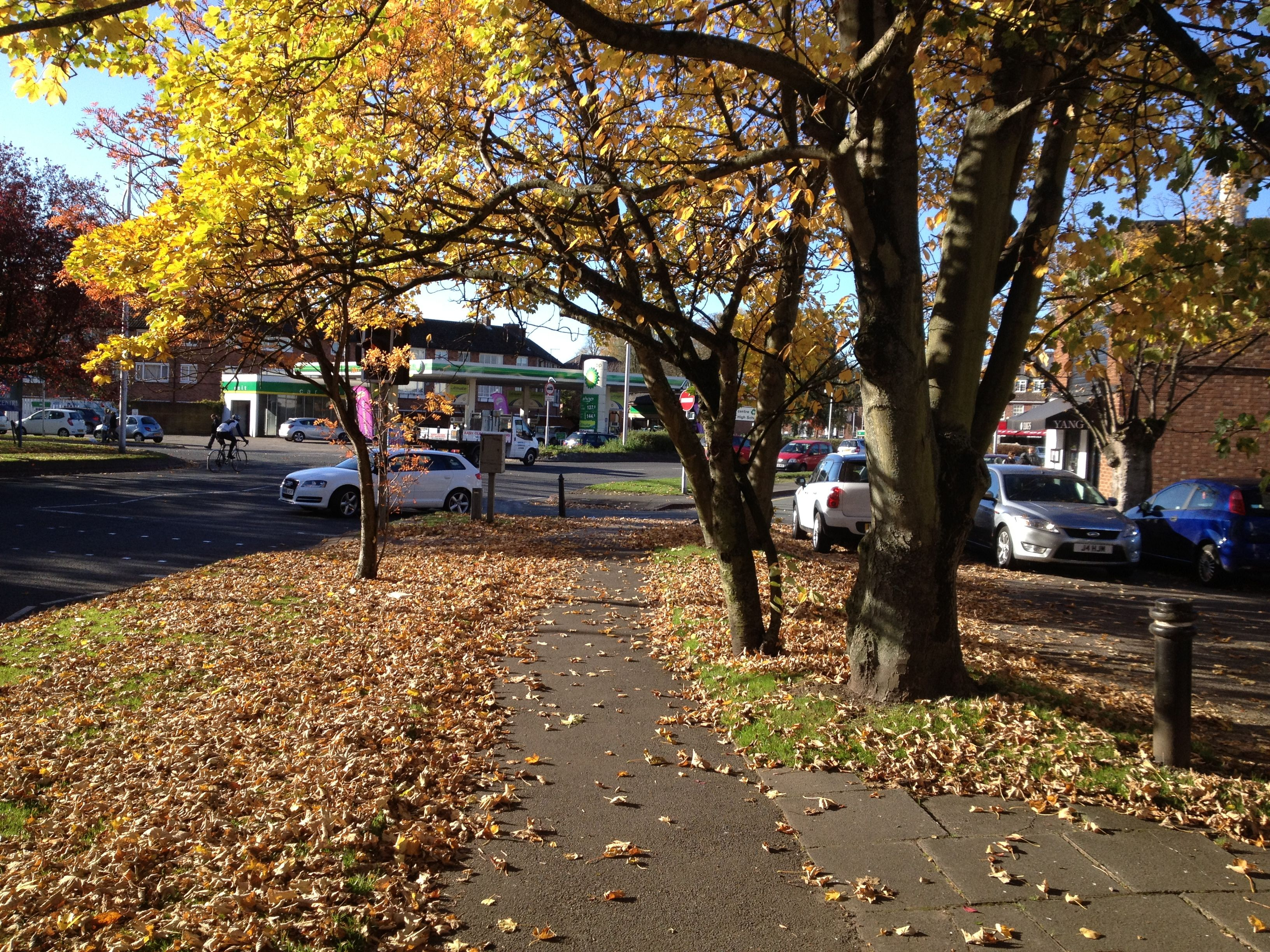 Photo At Wilmslow Uk October Autumn In The United