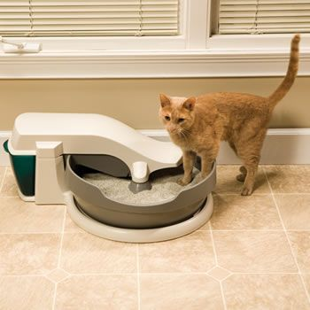 For Kitties Self Cleaning Litter Box Cleaning Litter Box