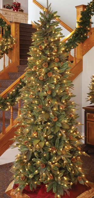 7.5 Foot, Prelit Artificial Christmas Tree, Green River Spruce, Slim.  Height - - 7.5 Foot, Prelit Artificial Christmas Tree, Green River Spruce, Slim