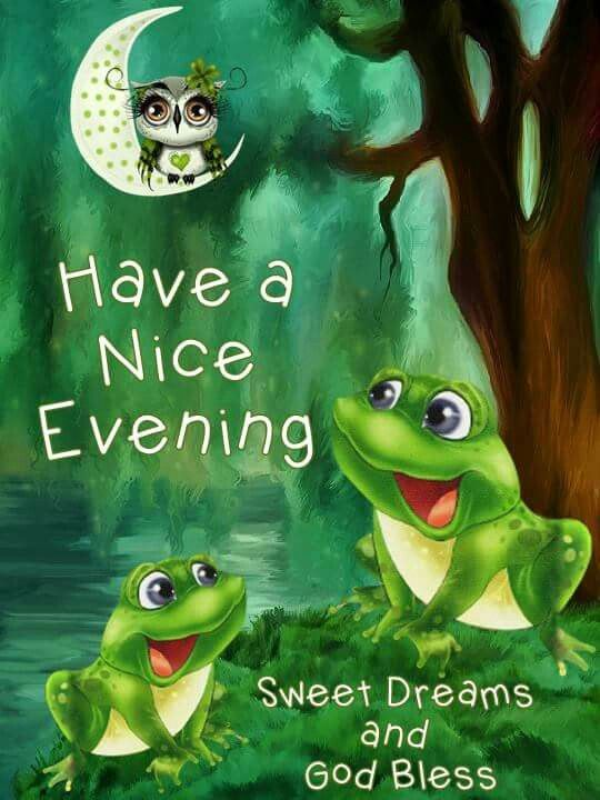 Pin By Barbara Stanley On Greetings Throughout The Day Frog Pictures Good Night Greetings Frog Art
