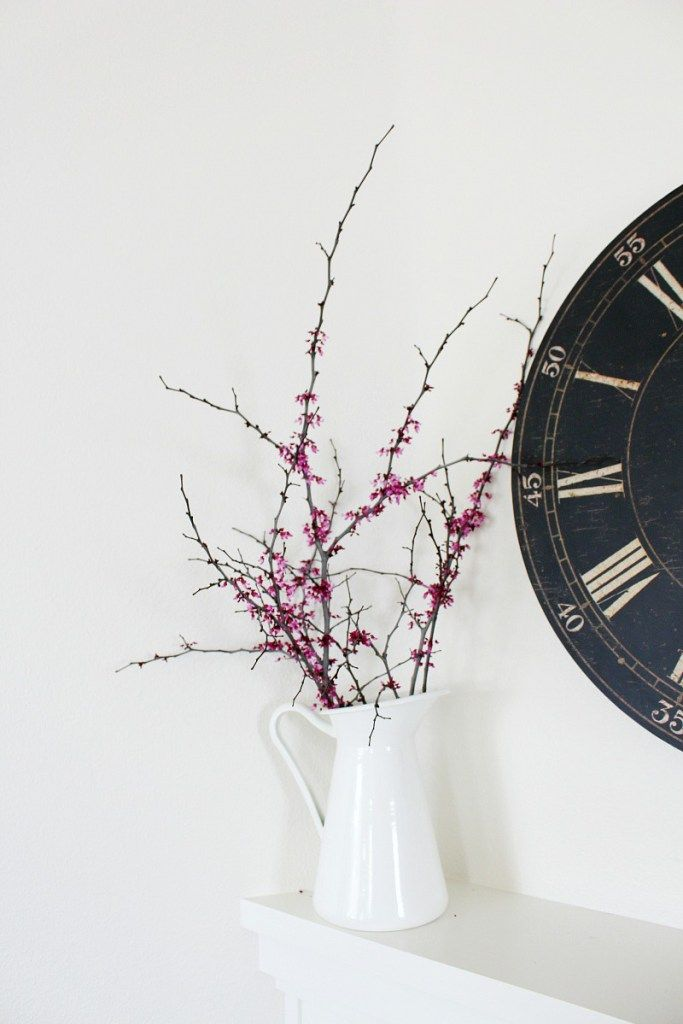 Forcing branches to bloom indoors | Redbud blossoms | Spring decor | Flowering branches