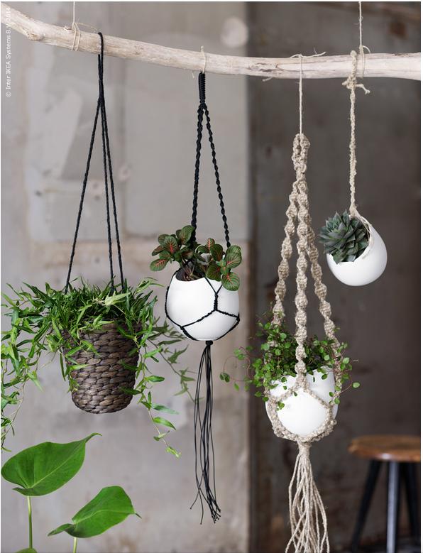 Hängepflanzen Zimmer 10 awesome ikea hacks by ikea pflanzen hängende pflanzen und neue