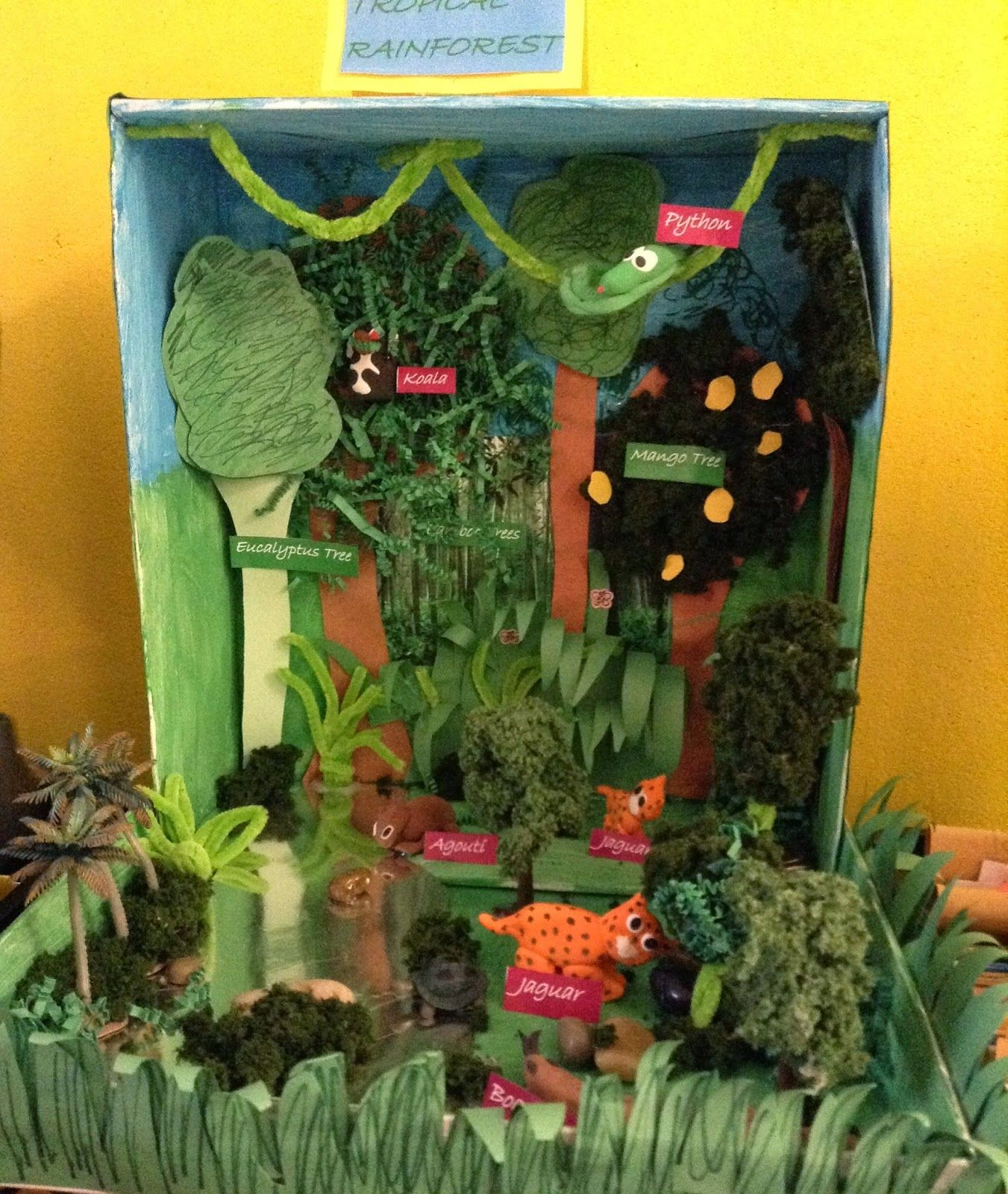Image Result For Creating Trees For A Rainforest Biome Box