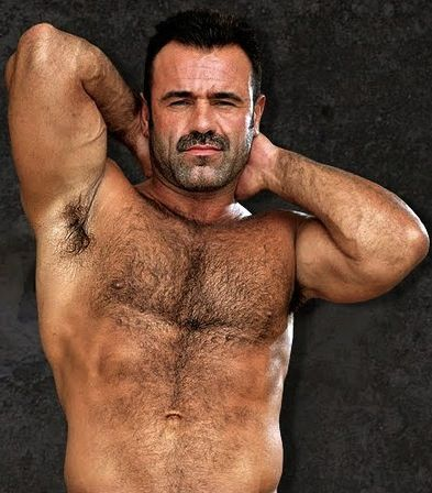 Gay daddies bears hairy erotic stories