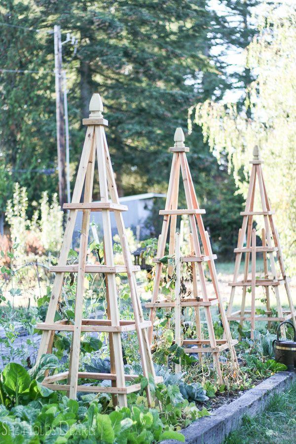 Tutorial, Woodworking, Gardening Project, Pyramid, Obelisk, Trellis ...