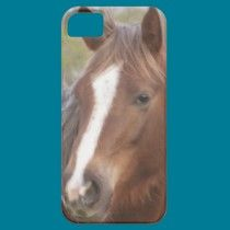 Philly casemate cases by ChristysCrazyCases   Horse iPhone 5