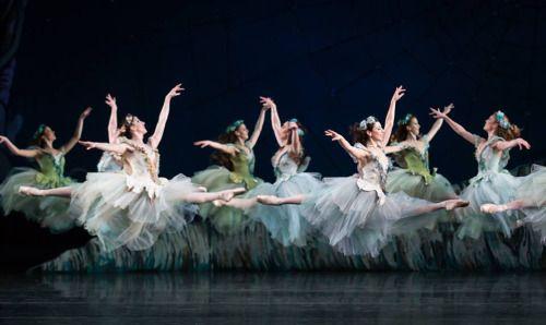 random beauty | yoiness: Nashville Ballet (Photo: Karyn...