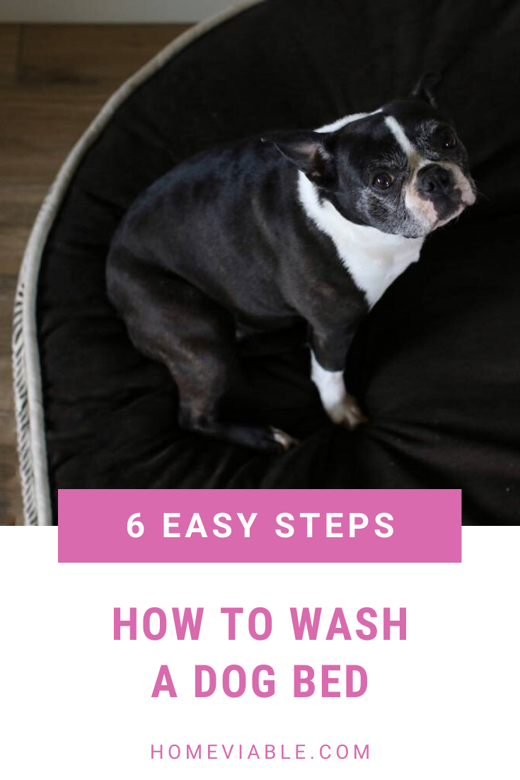 A Guide on How to Clean Your Dog's Bed in 2020 Dog bed