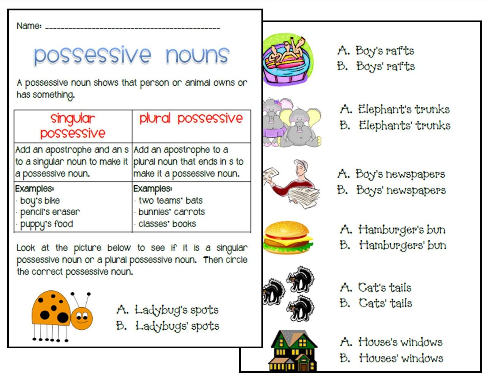 Singular and Plural Possessive Nouns   Possessive nouns [ 1236 x 1600 Pixel ]