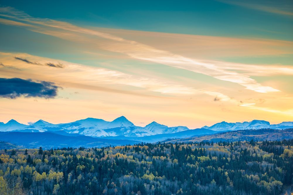 Changing seasons Photo by Jovan Simic -- National Geographic Your Shot