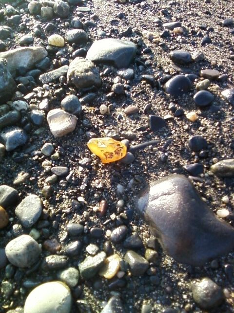 Agate on the beach of Cook Inlet - kenai area