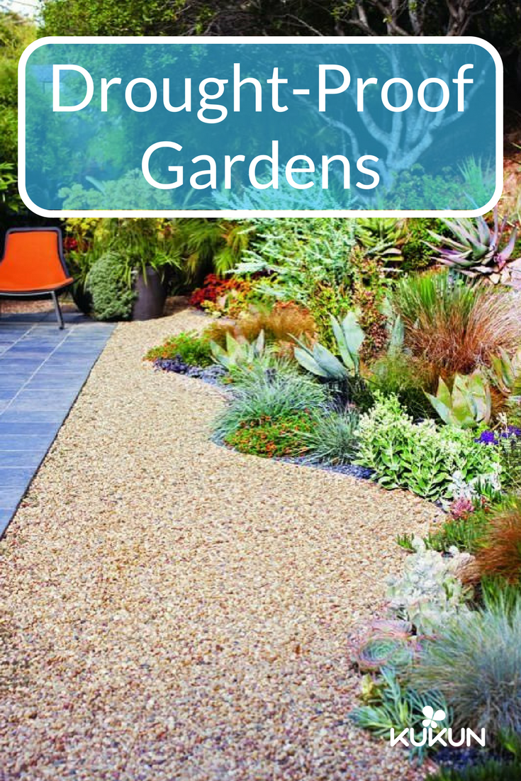 Three Beautiful Drought Proof Landscaping Ideas Kukun Lawn And Landscape Low Maintenance Landscaping Front Yard Desert Landscaping