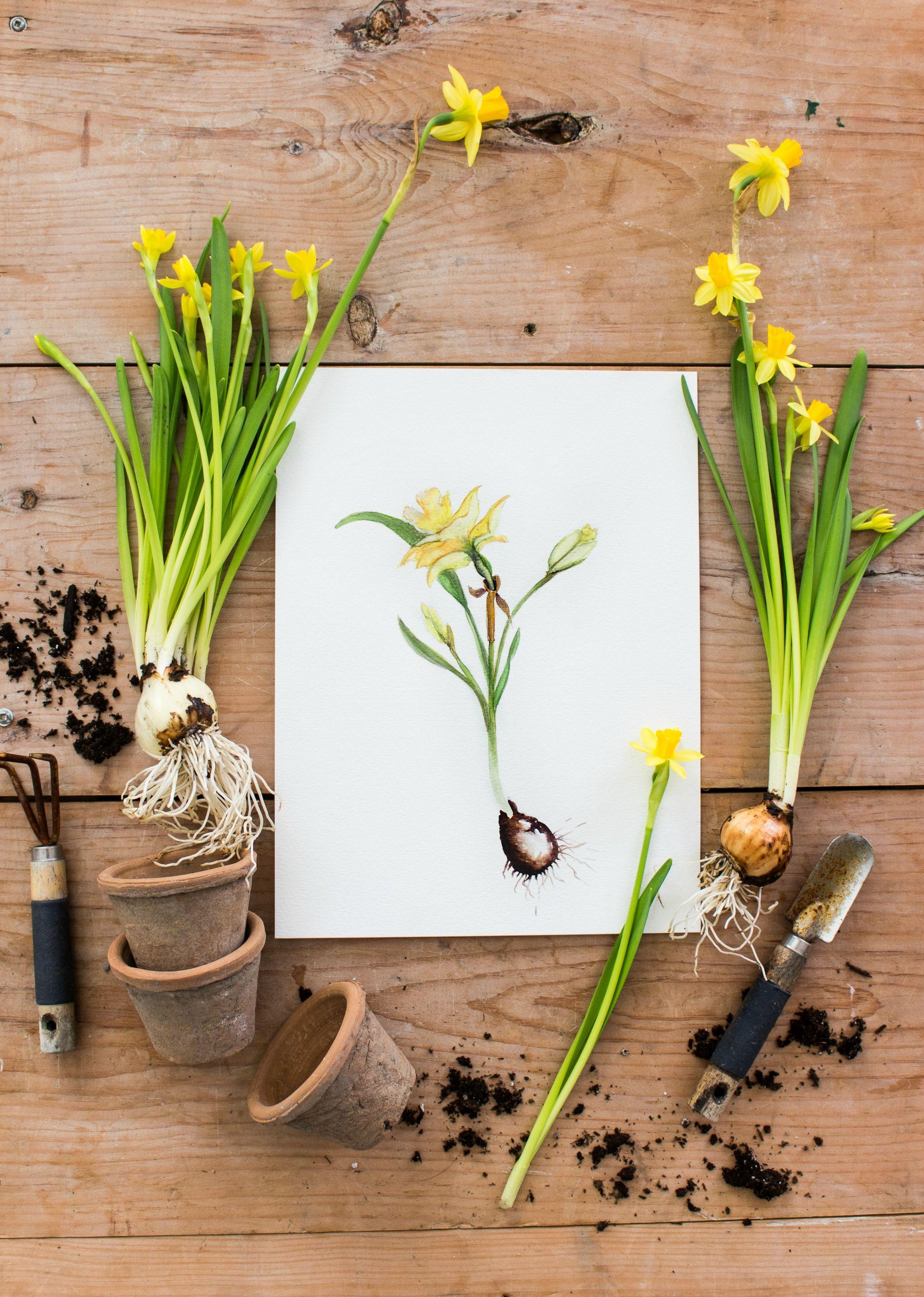 3 Free Spring Printables Spring Crafts Flower Art Watercolor