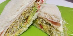 Receta de Sándwich con brotes de alfalfa