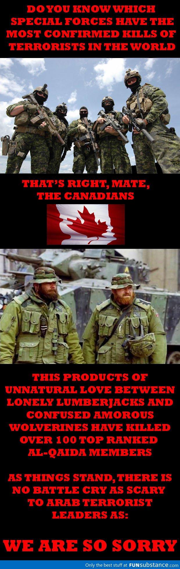 Battlecry Of Terror Funsubstance Canada Funny Canadian Humor Canada Memes