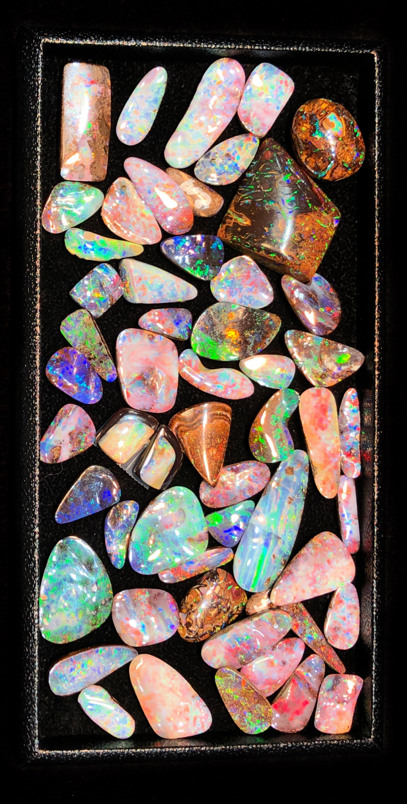Beautiful opals from Parle Gems! I love these colors. I saw these at the AGTA GemFair 2019.