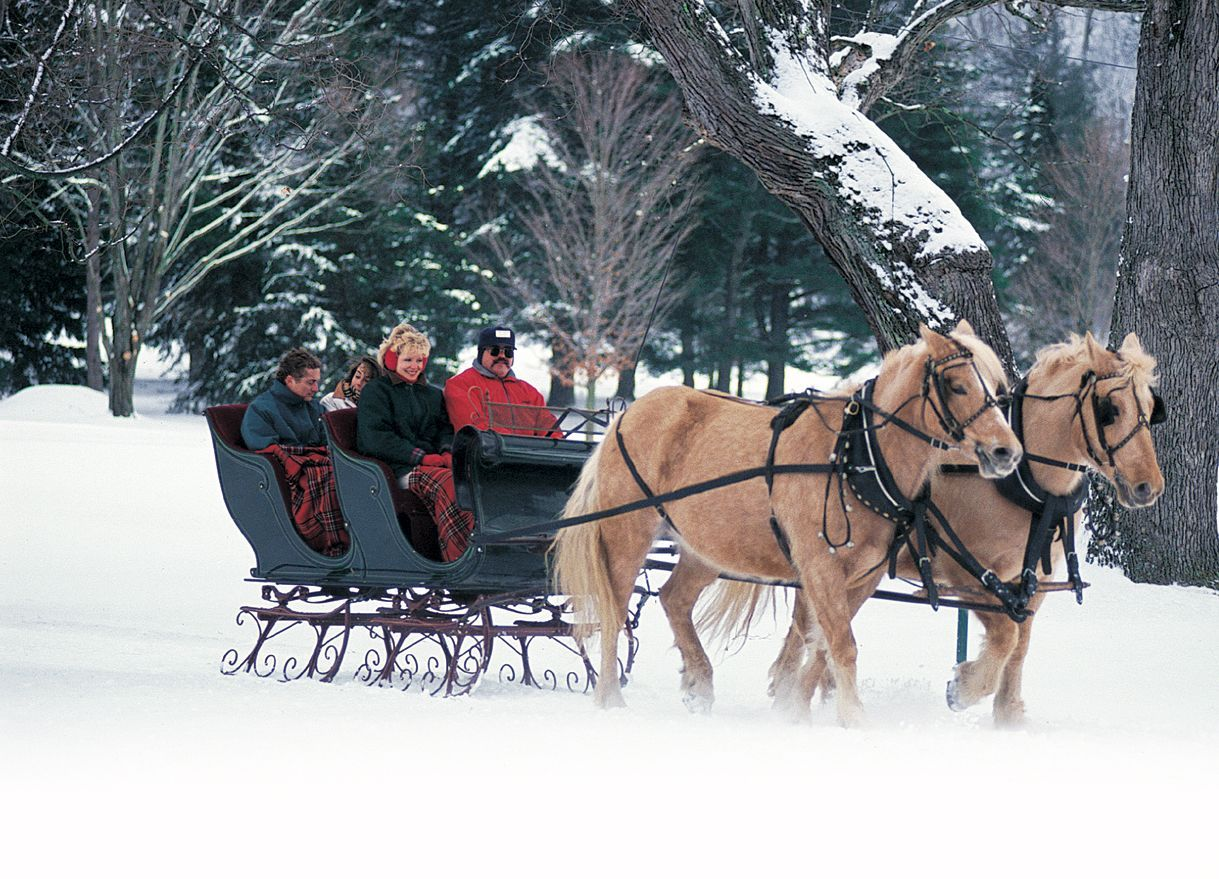 Christmas sleigh ride through the beautiful snow-covered grounds ...