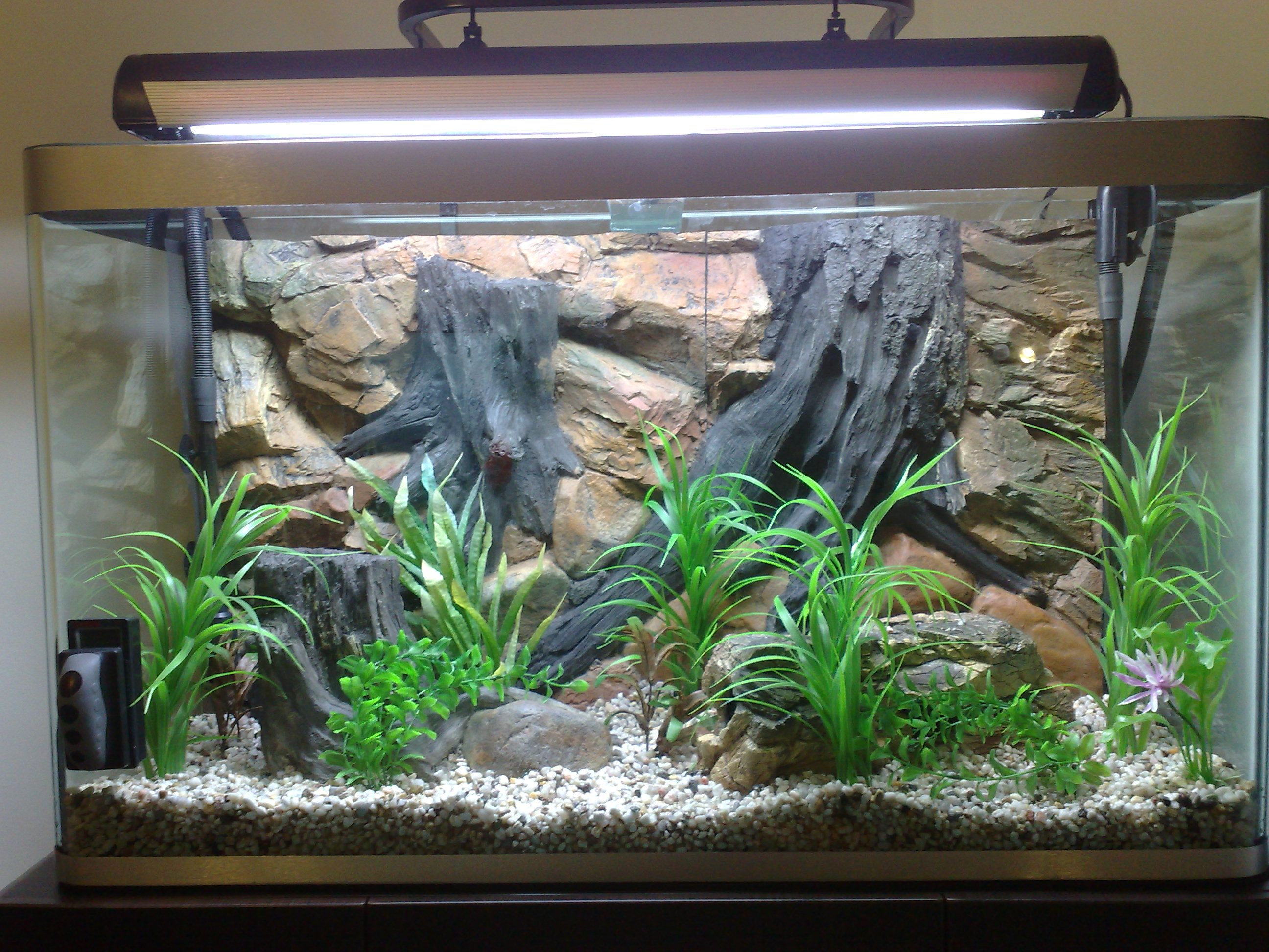 10 gallon fish tank background aquatic fx 3d backgrounds for Fish tank fireplace