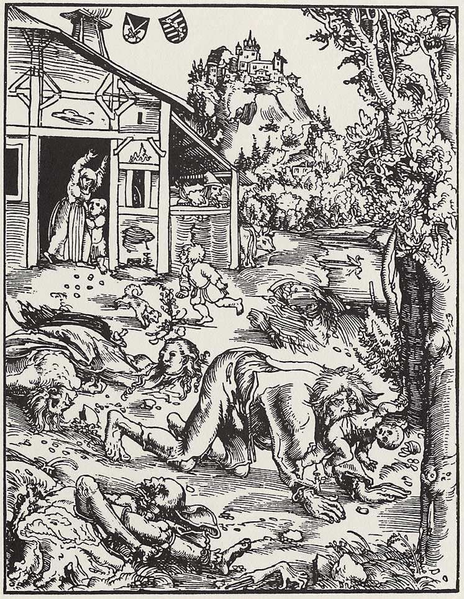 "The trial of ""Hans the Werewolf"" is a typical example of the combined werewolf and witch trials, which dominated witch hunts in Estonia. In the 17th century, an 18-year-old named Hans was convicted of both lycanthropy and witchcraft. He admitted to being a werewolf for two years, but denied making a pact with the devil. Hans told a story of being bitten by a man dressed in black who later turned out to be a werewolf."