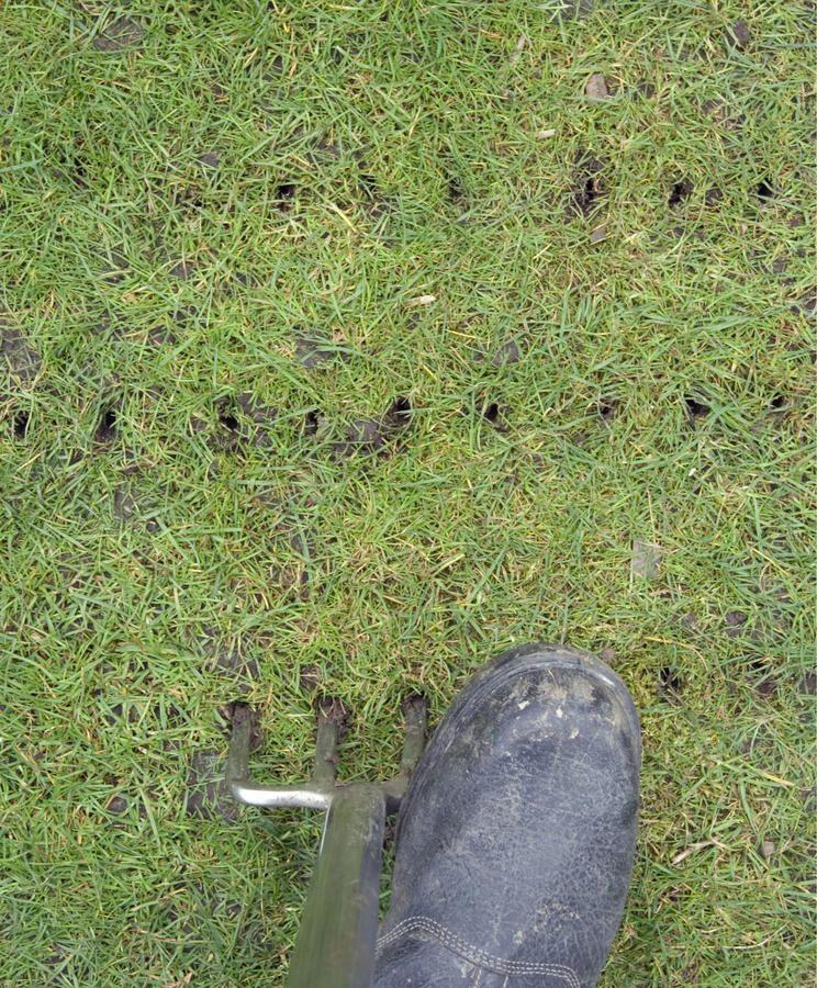 Eine Drainage Fur Den Gartenboden Rasen Rasen Luften Gartenboden