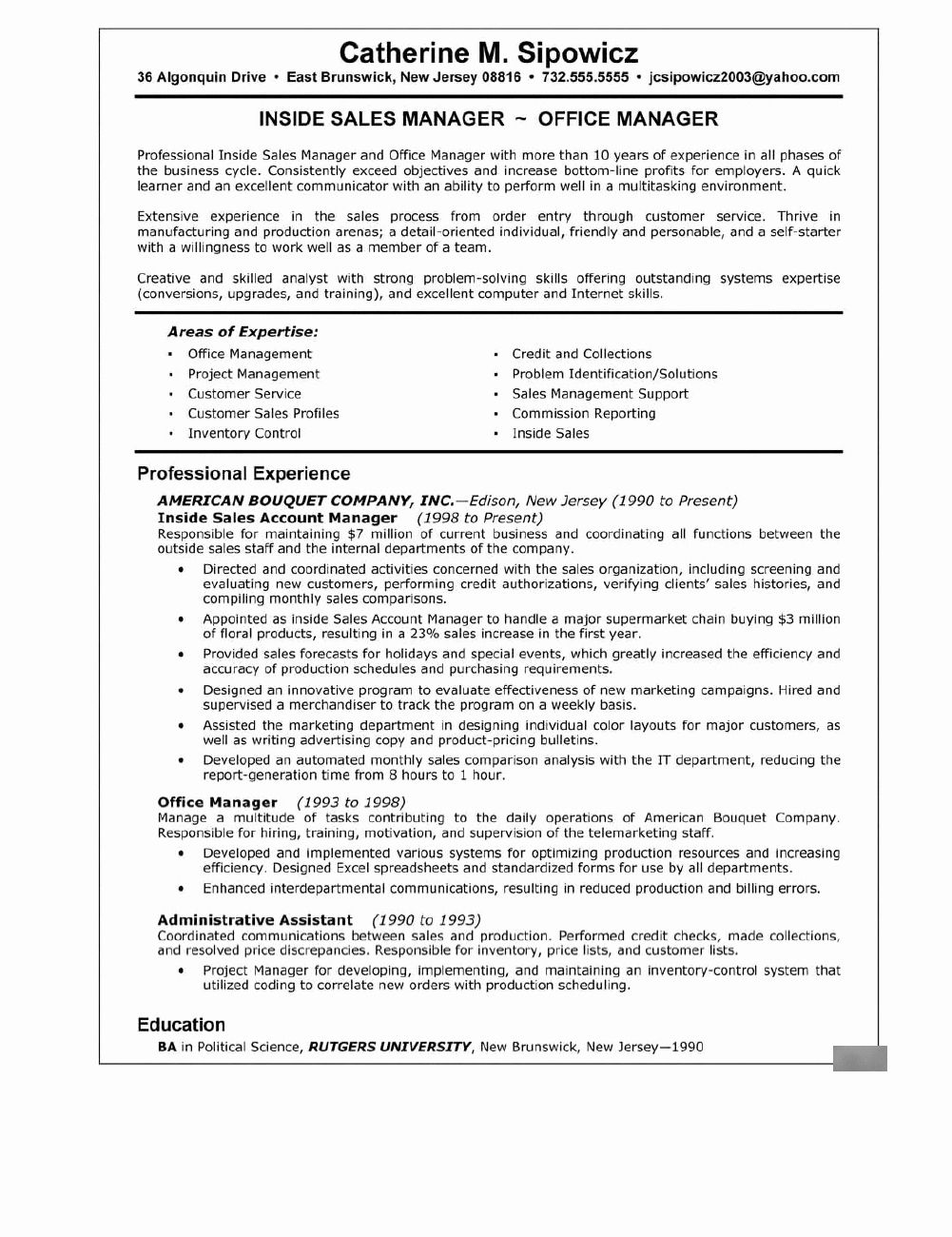 Sales Manager Resume Summary