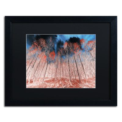 "Trademark Art 'First Show' by Philippe Sainte-Laudy Framed Photographic Print Mat Color: Black, Size: 16"" H x 20"" W x 0.5"" D"