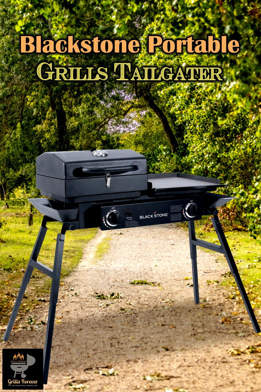 Blackstone Portable Grills Tailgater Best Flat Top Gas Used