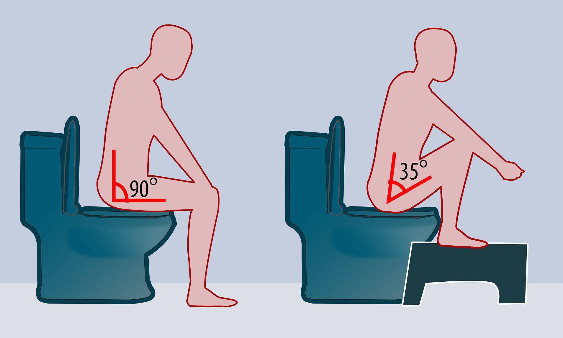 21++ Proper bowel movement position trends
