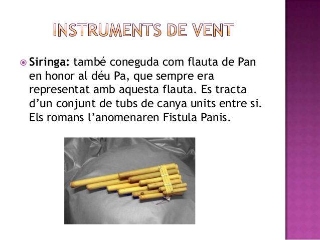  Siringa:         també coneguda com flauta de Pan en honor al déu Pa, que sempre era representat amb aquesta flauta. Es ...
