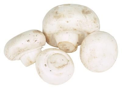 Button mushrooms are also called common mushrooms, white mushrooms and table mushrooms.