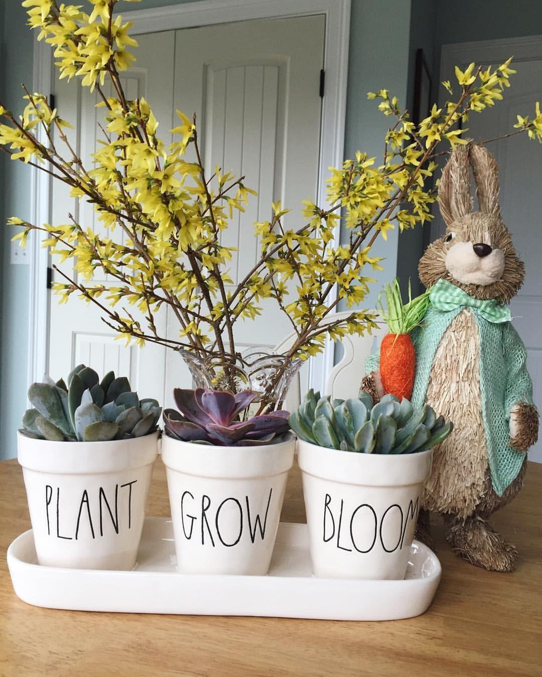 Cute Home Decor: Rae Dunn Mini Gardening Pots