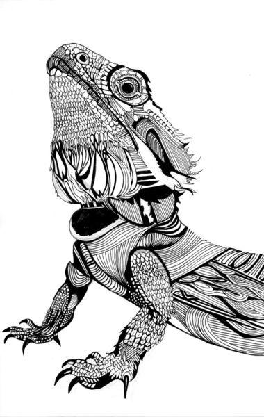 Dragon/lizard | ✐Adult Colouring~Dragons~Lizards~ Snakes~Zentangles ...