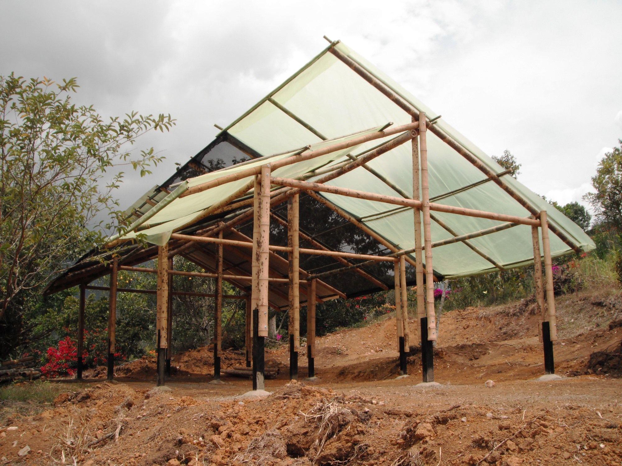 Estructura en bambú-guadua para vivero multifuncional. Finca Mate ...
