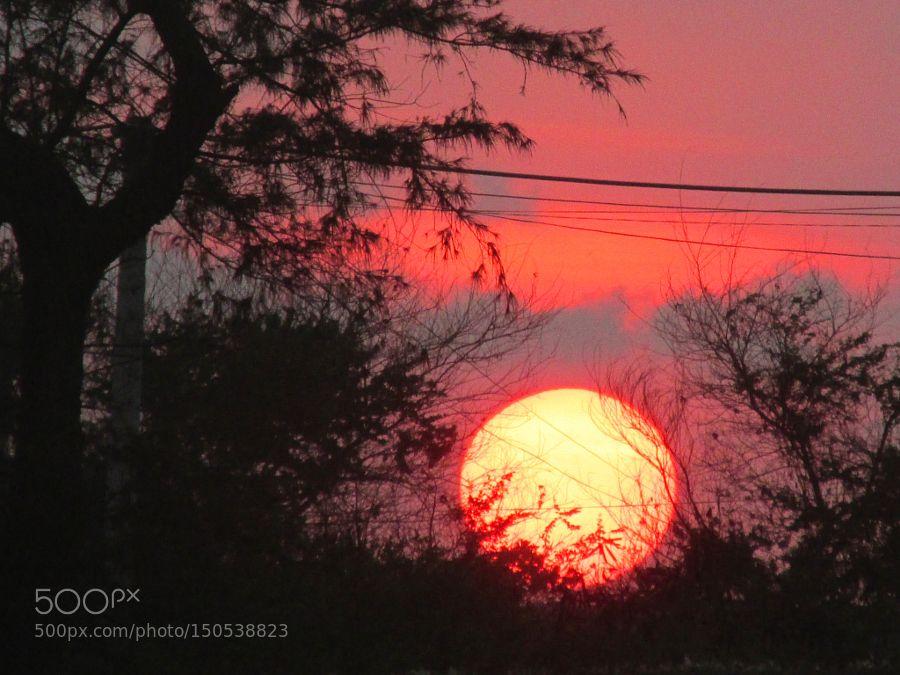 Sunset by lehoanhvu. Please Like http://fb.me/go4photos and Follow @go4fotos Thank You. :-)