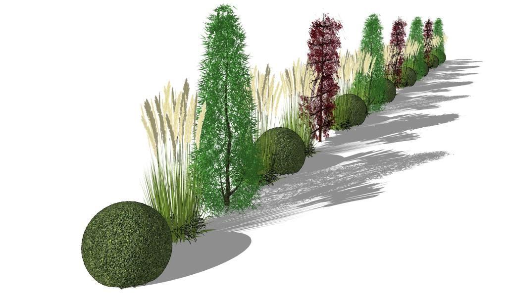sichtschutzkombination aus säulembäumen, heckenelementen, gräsern, Garten Ideen