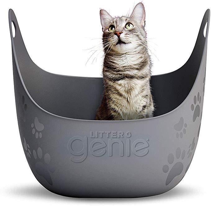 Amazon Com Litter Genie Cat Litter Box Pet Supplies Informations About Litter Genie Cat Litter Box Pin You Can Easily U In 2020 Kitten Supplies Cat Litter Litter