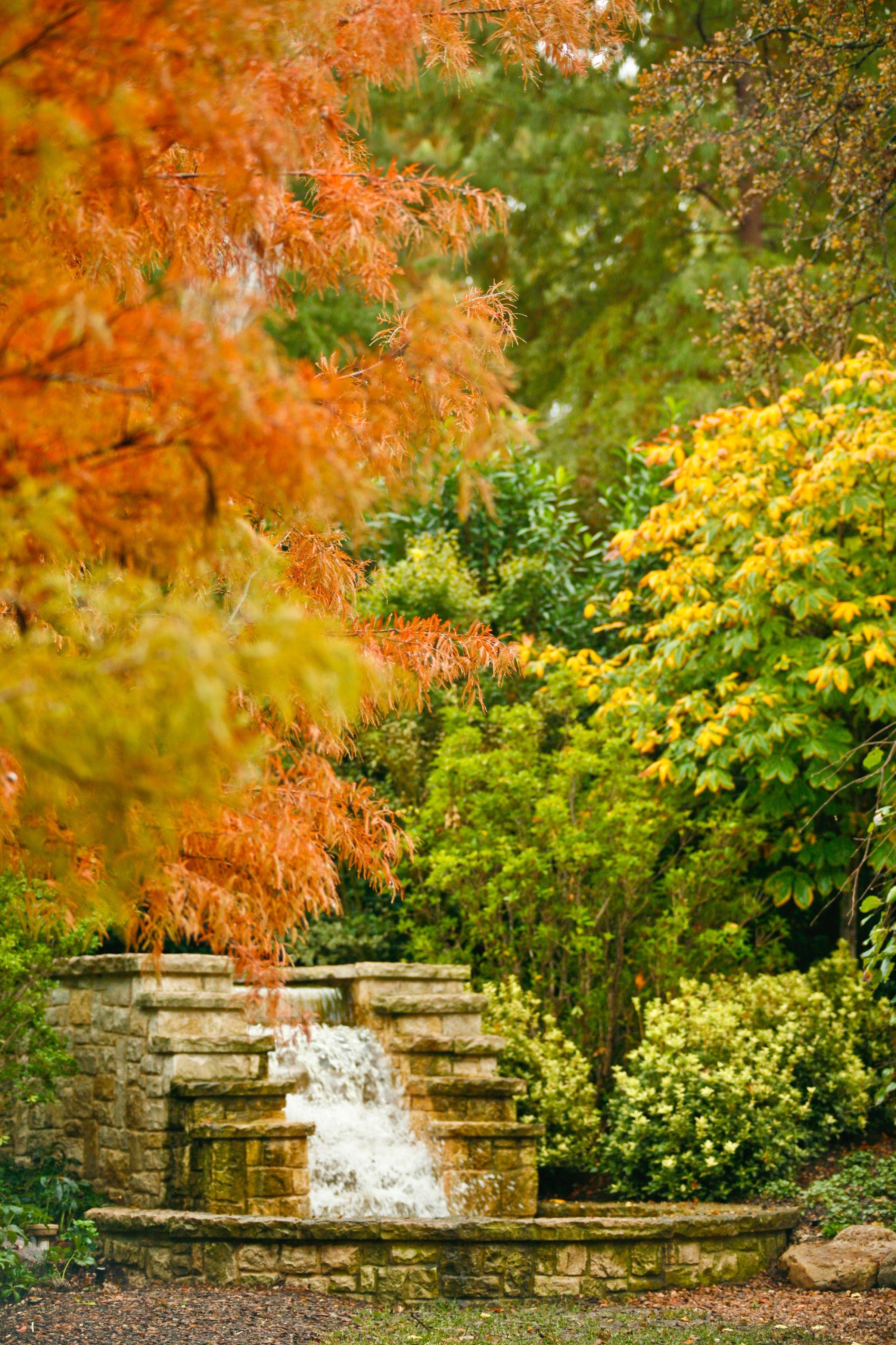 dallas arboretum autumn foliage in a woman u0027s garden autumn at
