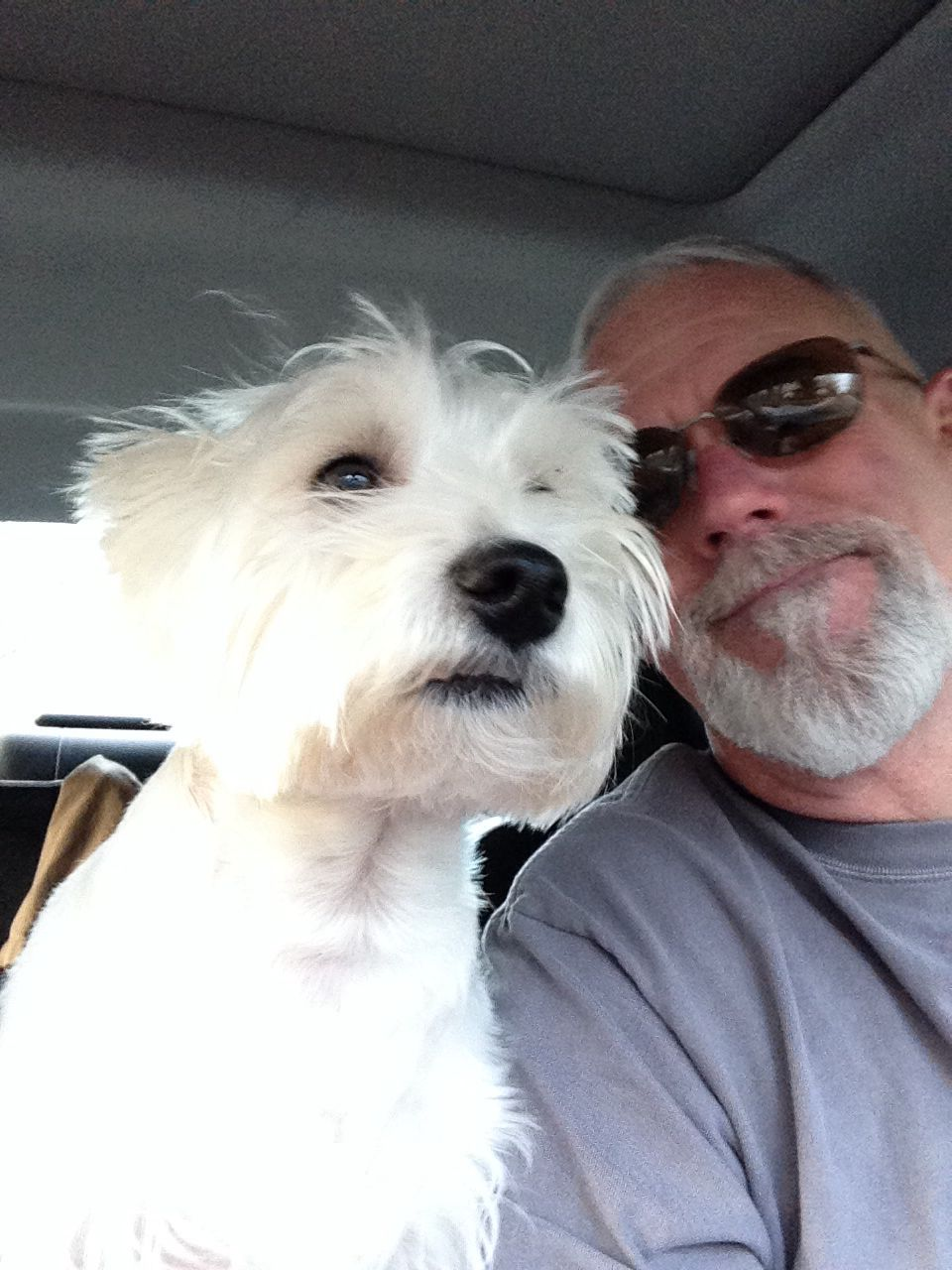 Dog (Fintan) is his co-pilot!