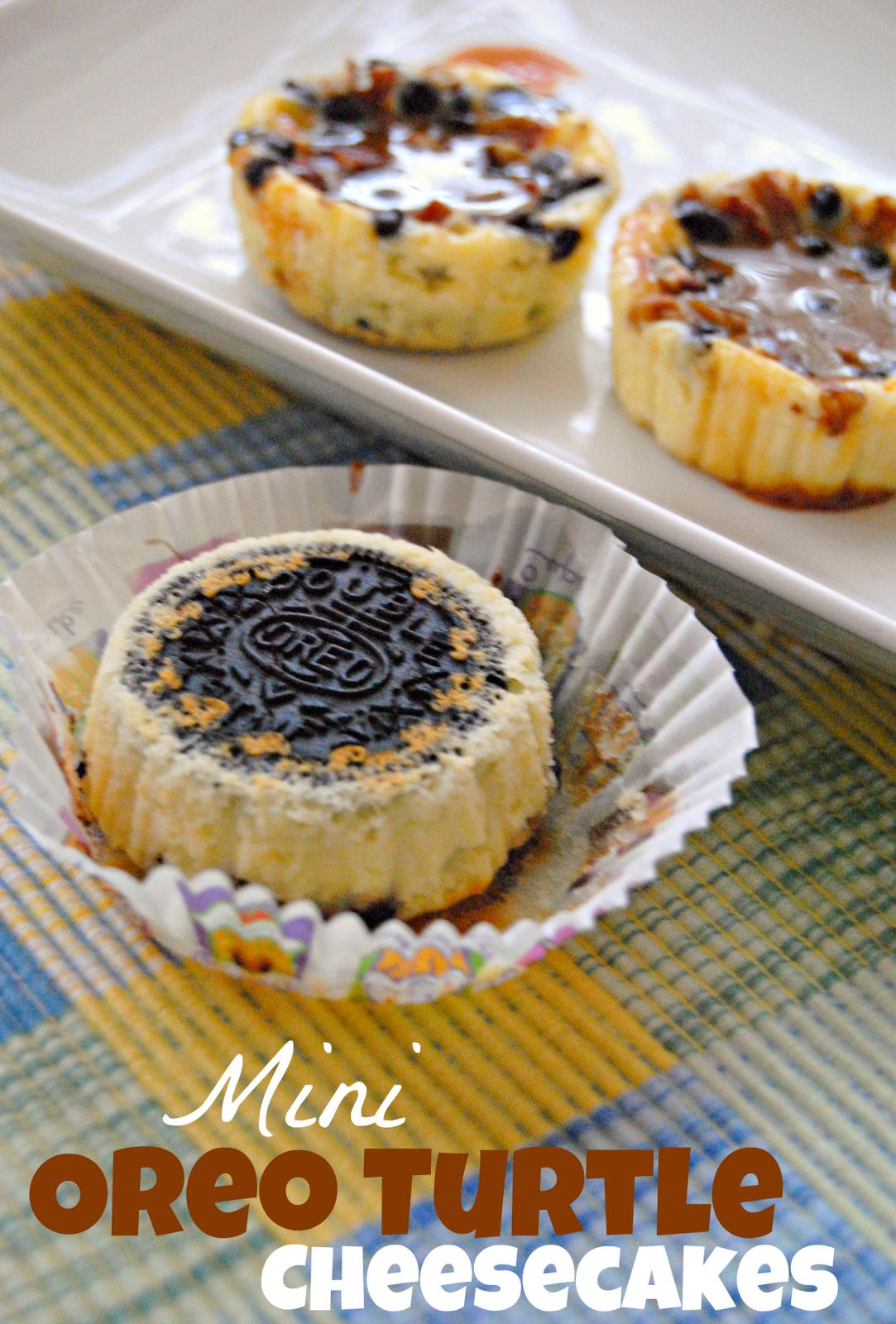 Mini Oreo Turtle Cheesecakes