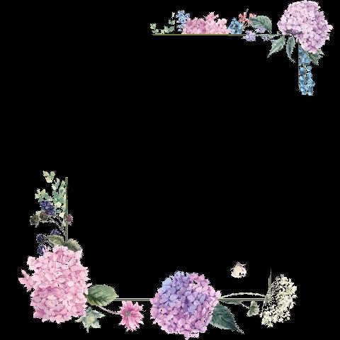 Discover Trending Flower Stickers Flower Drawing Flower Border Png Flower Border