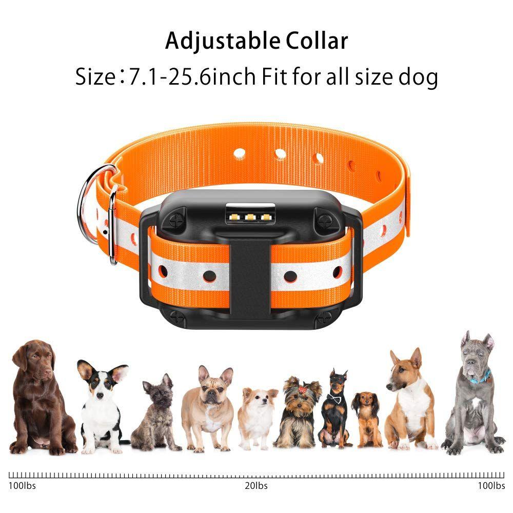 Ace Teah Dog Training Collar, Rechargeable Rainproof