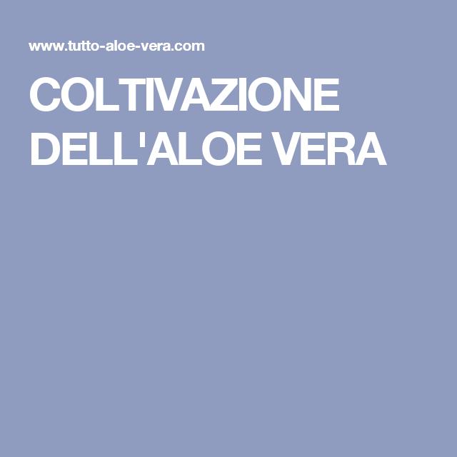 COLTIVAZIONE DELL'ALOE VERA