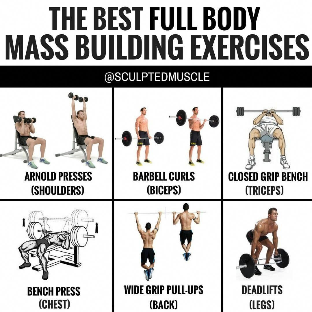 Interested In Finding More About Bench Press Alternative Then Read On Woodenbenchpress Full Body Workout Routine Mass Building Full Body Workout