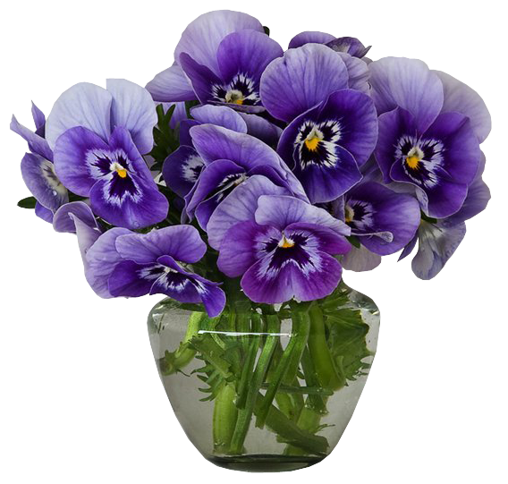 Violets Vase Bouquet Clipart Pansies Flowers Beautiful Flowers Pansies