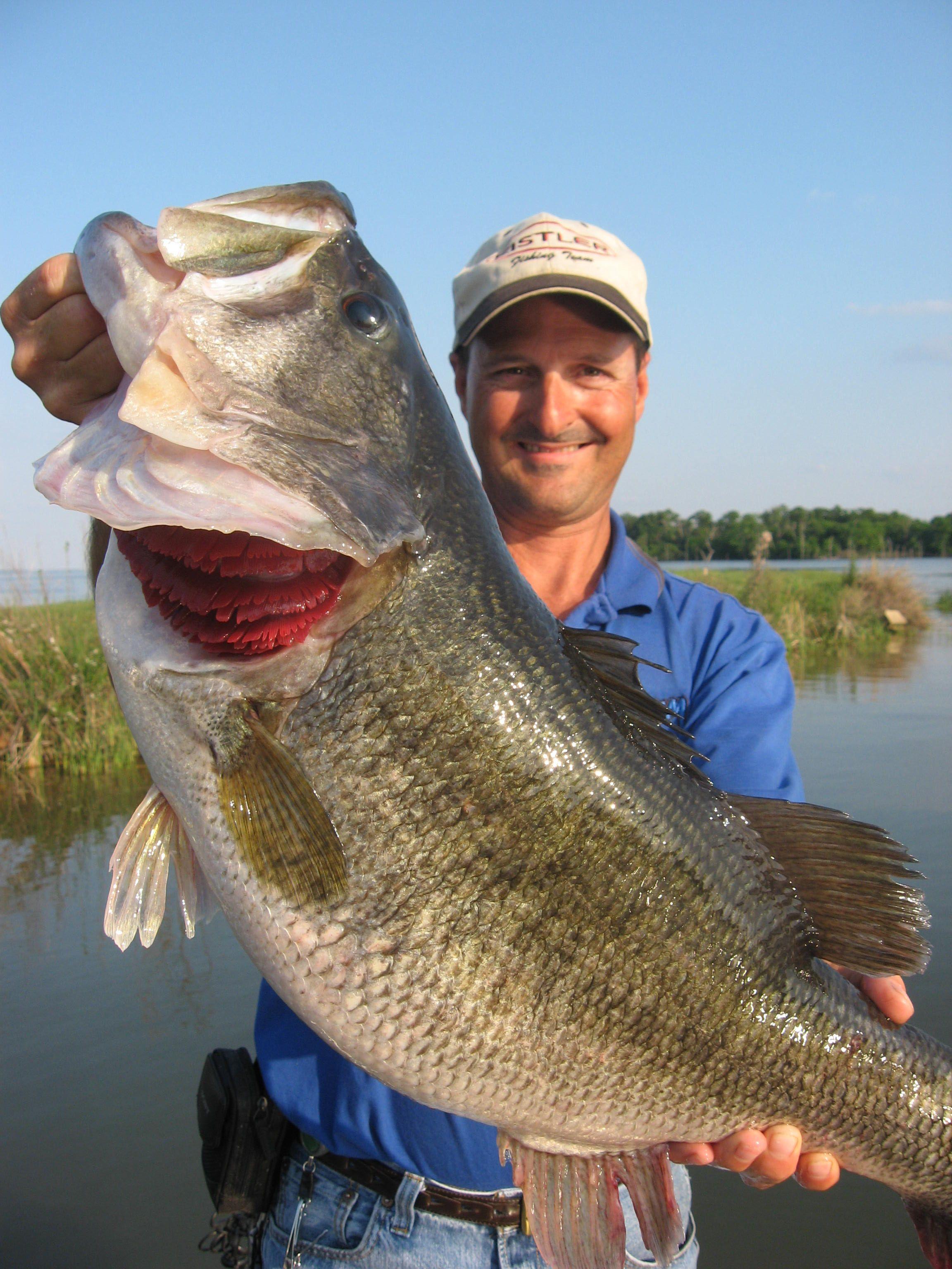 bass fishing images Lake Fork Fishing Guide Richie White