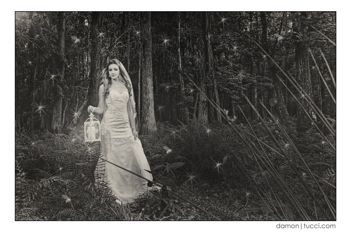 Marisa wedding dress  Styled photo shoot with damontucci photography and Ali Lee Artistry