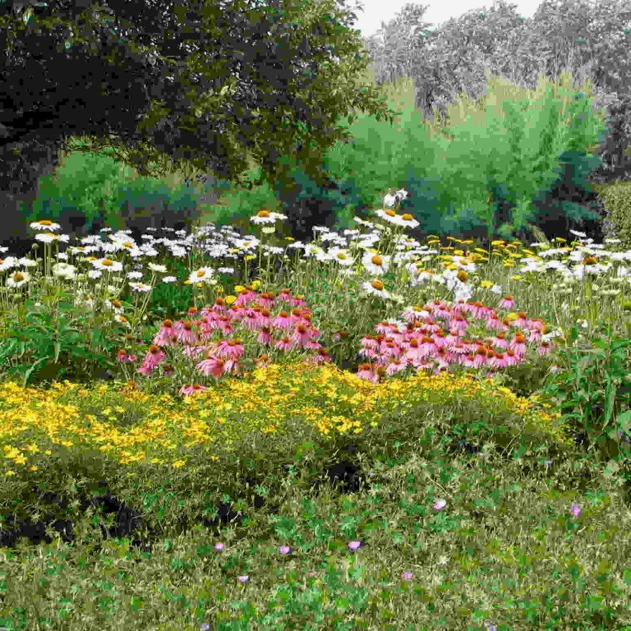 Cottage garden landscape design ideas   Easy Cottage Designs You Can Create To Complement Your Home